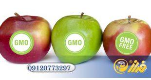 تولید لیبل میوه